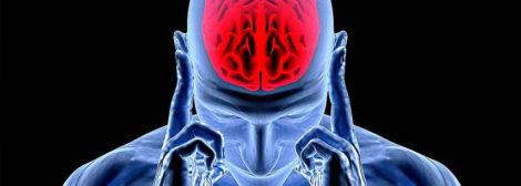 психотерапевтическая кинезиология