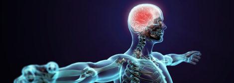 обучение психотерапевтической кинезиологии