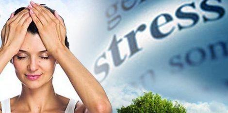 лобно-затылочная коррекция как метод антистрессовой кинезиологии